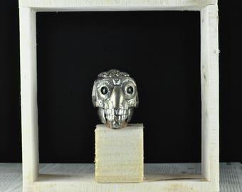 Kapala monkey - Monkey skull