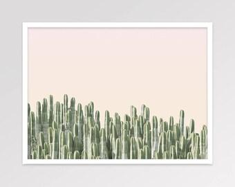 Cactus Photography, Pink Green Desert Wall Decor, South Western Desert Plant Print, Printable Art, Minimalist Scandinavian, Instant Download