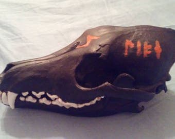 Hand Painted Coyote Skull