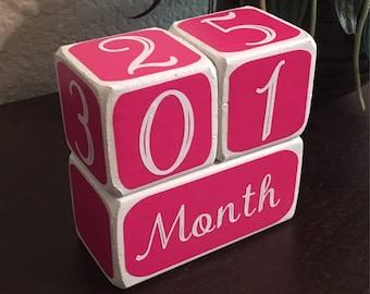 Baby Month Milestone Blocks, Month Blocks, Baby Picture Props, Newborn Photo Shoot Prop, pink, girl