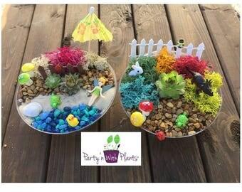 fairy garden kit succulent succulent fairy garden fairy garden party fairy craft. beautiful ideas. Home Design Ideas