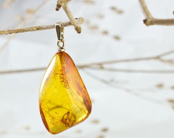Lovely 9k Gold and Baltic Amber Pendant with Fossil Insect  IP-040218
