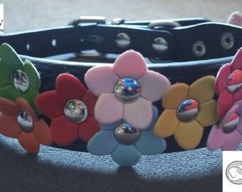 Valentine's Day Sale!  Little Flowers Dog Collar