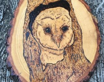 Barn Owl Woodburning