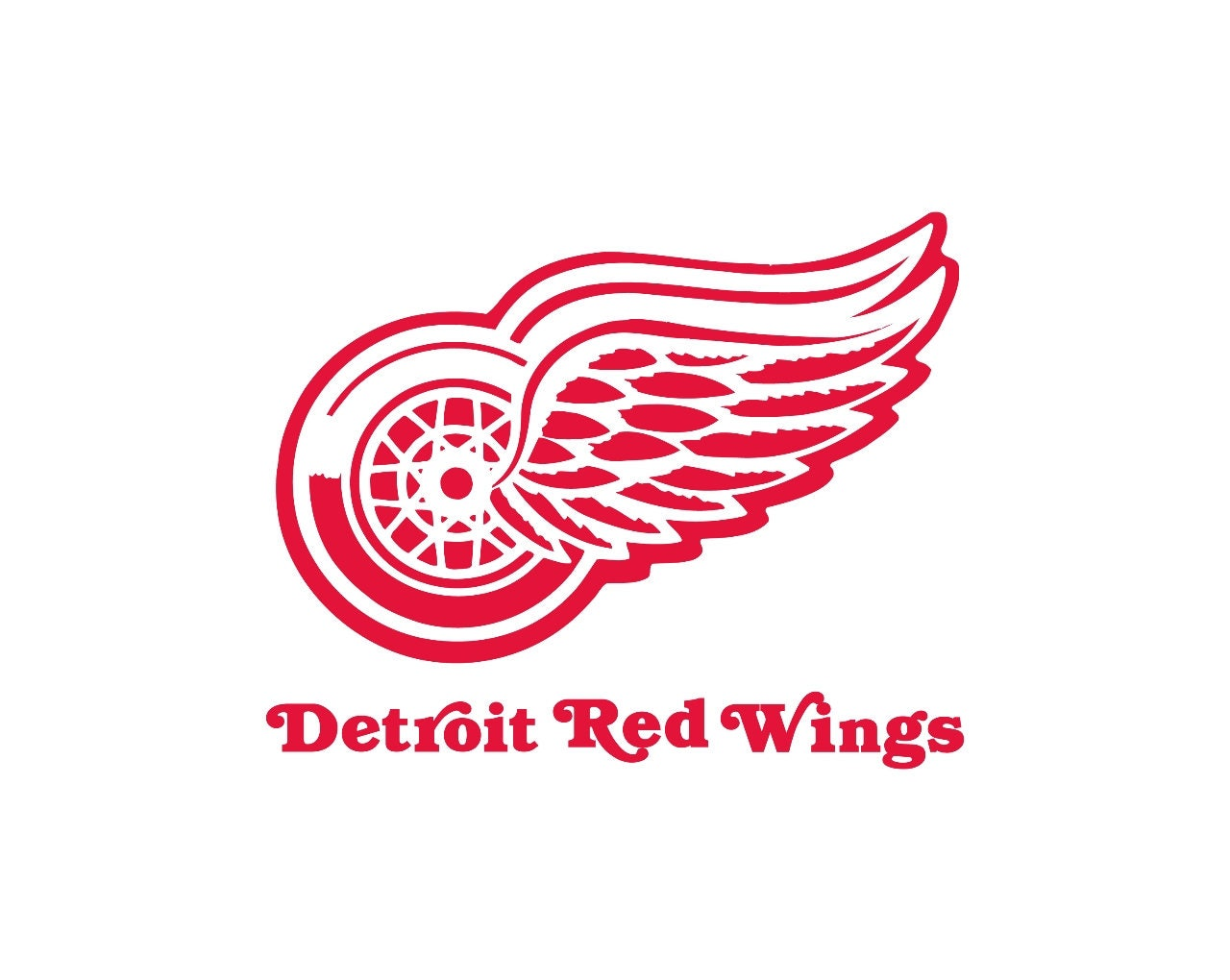 Detroit Red Wings Shoes
