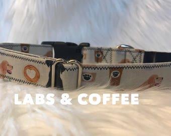Labs and Coffee: lab dog collar, Starbucks dog collar