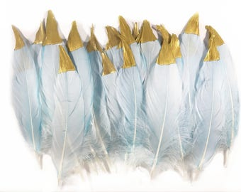 6-8 inch Craft Blue Died Gold Dipped Goose Feathers