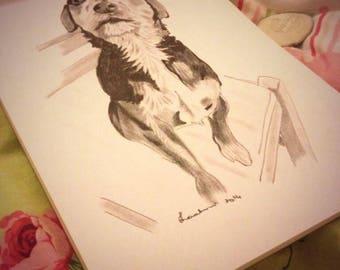 Pencil portrait of your pet