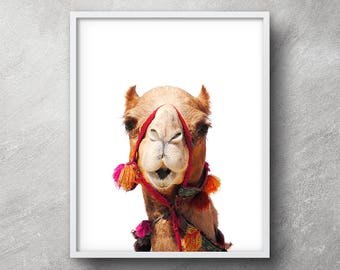 Camel print, Camel photography, Llama print, Alpaca print, Nursery wall art, Digital Print, Printable art, Nursery decor, Kids Room