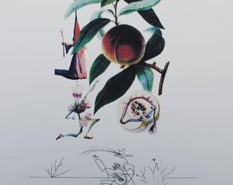 Salvador DALI - fishing recipies - Printographie 800ex