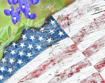 American Flag Blue Bonnet High quality Print