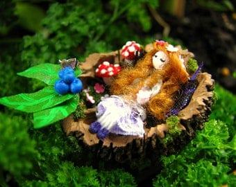 Miniature Sleeping Fairy-Nutshell Miniatures-Faries-Nutshells-Faeries-OOAK