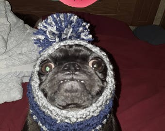Dog snood..