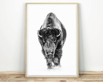 Bison In Snow - Buffalo Print, Bison Poster, Printable Wall Art, Black And White, Bison Home Decor, Large Wall Art, Wild Bison, Nordic Print