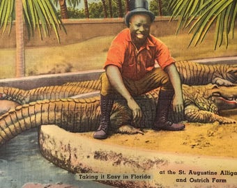 Black Americana - Alligator Postcard - Daring Black Man Sitting on an Alligator! - NOS from 1940s - St. Augustine, FL - Paper Ephemera