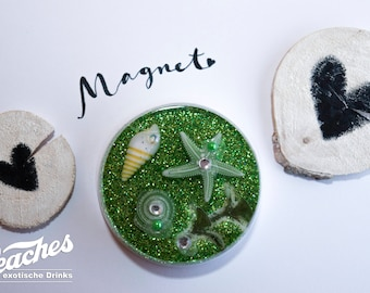 Fridge Magnet, magnet, starfish, underwater world