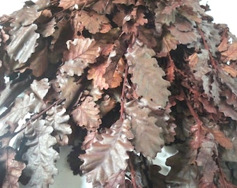 Preserved Brown Oak leaves bunch, fall decor, preserved oak leaf for craft,bouquet of oak leaves