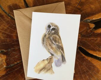 "Greeting Card - Blank, ""Saw Whet Owl"""