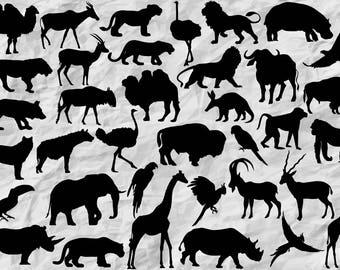 36 African Animals Silhouettes | SVG cut file | Safari Animals | Printable | vectors | digital | wild animals | wall print | decoration