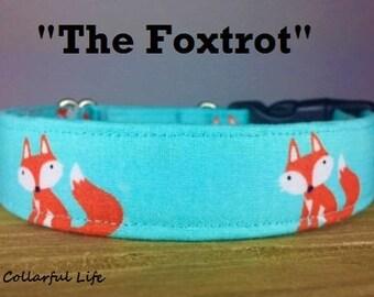 "Teal Orange Fun Fox Dog Collar - ""The Foxtrot"""