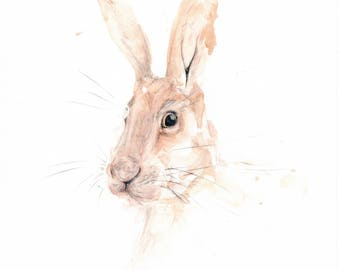 Hare Of The Dog Signed Limited Edition Print of my Original Water Colour Painting