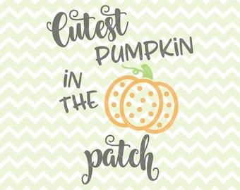 Cutest Pumpkin In The Patch SVG & PNG, Halloween Clipart, Halloween SVG, Halloween Iron, Commercial Use Halloween Clipart