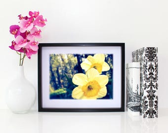 Blissful, Floral Photography, 6x8 matted print, wall art, matted photo, 6x4 print, Flower print, Flower Photo, Modern Art