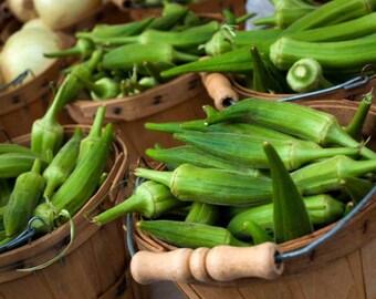 GREEN OKRA Lady Finger, Bhindi, Gumbo, Abelmoschus Esculentus Vegetable 20 Seeds