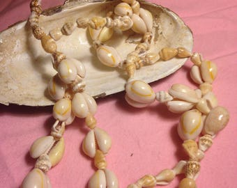 Vintage Puka Shell Necklace