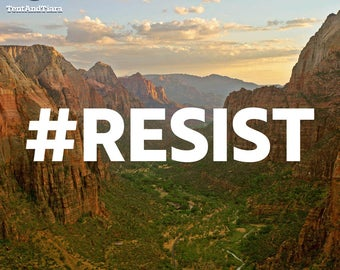 Hashtag RESIST - Vinyl Decal, Car Decal, Laptop Decal, Water Bottle Decal, Bumper Sticker, Yeti Decal, National Parks, AltNPS, Nature