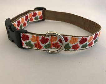 Designer Dog Collar with Fall/Autumn Leaves