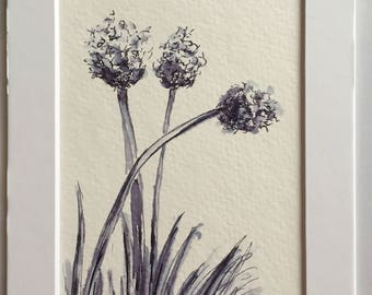 Weeds or flowers