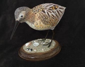 Short Beak Dowitcher Carving