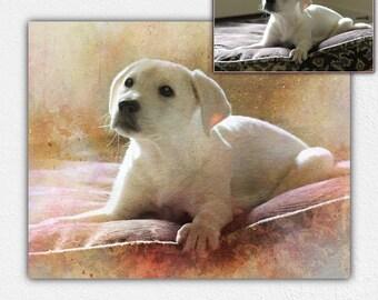 Custom pet portraits, pet painting, pet illustration, pet portrait, pet custom portrait, custom pet drawing, pet wall art, instant download