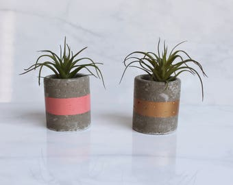 """Concrete Trinket Dish - Small Cylinder Pot - 2 1/4"""" Tall - Office Desk Decoration or Air Plant Holder - Custom Color, Metallic or Matte"""