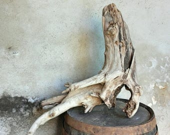 Large sculptural Driftwood stump