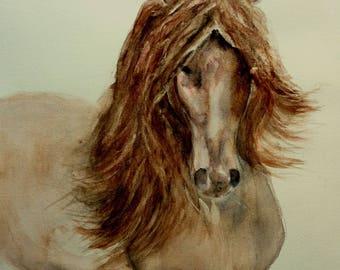 beautiful horse watercolor