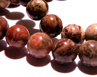 5 Pearl Jasper shiny 10 mm - natural - gemstone fine PG256
