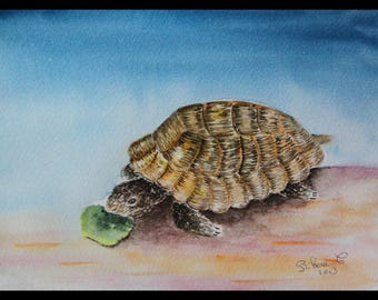 Original illustration painted in watercolor on paper 300 g/m² small turtle