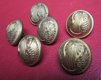 6 buttons Army Air * 2.1 cm * brass - France