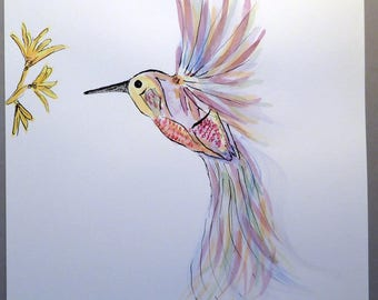 Paint drawing Hummingbird watercolor and ink on paper
