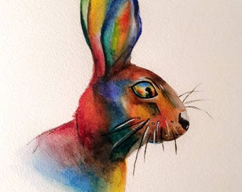 "A ""Rainbow Rabbit"""