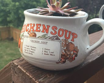 Chicken, Tomato, and Onion soup mugs with Succulents