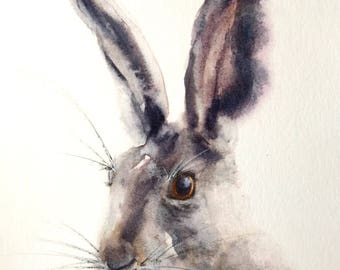Card - Moonglow Hare, Greetings Card