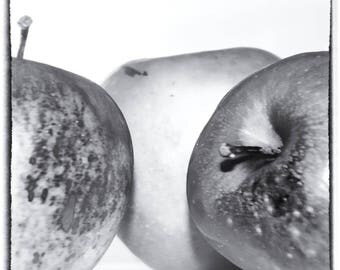 Apple Still Life - Fine art Photography by Jamie Holland
