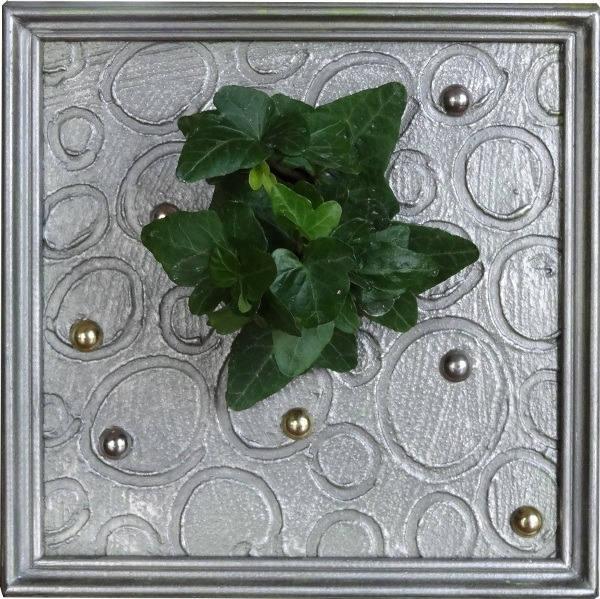 tableau argent et clout mini plante naturelle vendue. Black Bedroom Furniture Sets. Home Design Ideas