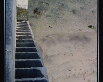 original photo stairway to the beach - photo 20 x 15