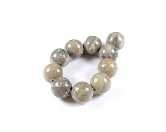 5 LBP00224 10mm natural fossil coral beads