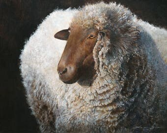 "One Sheep: Canvas Reproduction 44"" x 33"""