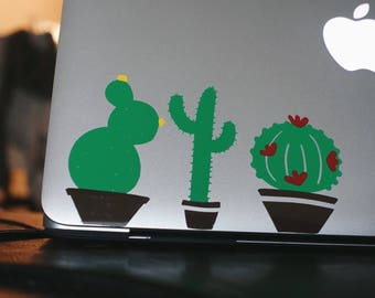 Cactus decal/Calcomania de cactus